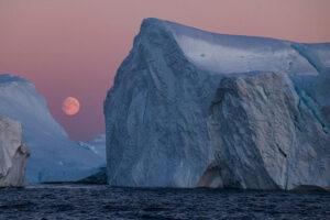 Norbert Rosing – 30 Jahre Naturfotografie mit LEICA